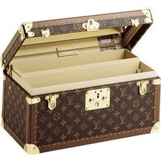 Wouldn't it be fabulous to travel with a case like this?      Louis Vuitton Travel case