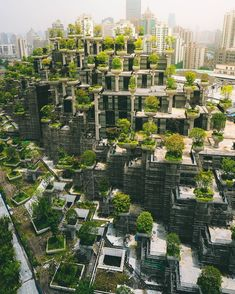 Concrete Jungle in Shanghai, China IG: Amazing Destinations, Travel Destinations, Cool Pictures, Beautiful Pictures, Coron Palawan, Vacations To Go, Amazing Pics, Awesome, Concrete Jungle