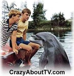Flipper TV Show Cast Members