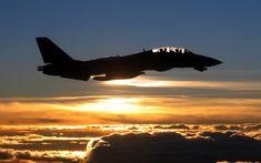 ..._F-14 Tomcat..