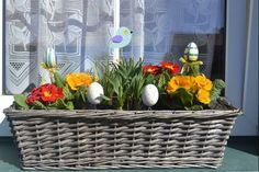 Jarní truhlík... Potted Plants, Spring Time, Basket, Table Decorations, Flowers, Handmade, Crafts, Outdoor, Furniture