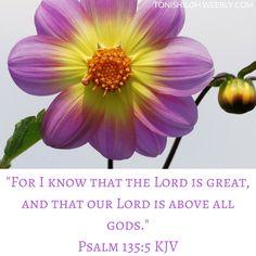 Psalm 135:5 KJV