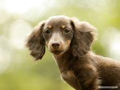 petite and pretty :)