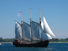 May 2020 - This three masted schooner offers non-guided tours of the Toronto harbor on Lake Ontario from the start of May to the end of September. Full Sail, Online Tickets, Tall Ships, Summer Travel, Tour Guide, Sailing Ships, Ontario, Trip Advisor, Need To Know