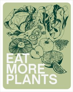 Eat more plants and make the world a better place. Both for humans, animals and the environment!