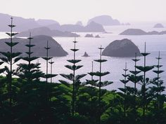 Composed of 144 Islands, the Bay of Islands , Northland, New Zealand Places Around The World, The Places Youll Go, Places To See, Places To Travel, New Zealand North, New Zealand Travel, Beautiful World, Beautiful Places, Tasmania