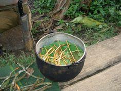 A Revista Brasileira de Psiquiatria publicou um estudo sobre o uso de ayahuasca para tratamento da depressão. As sessões foram conduzidas no Departamento de Neurociência da Faculdade de Medicina da USP.