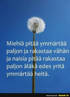 Miehiä pitää ymmärtää... - HAUSK.in Life Words, Haha, Beautiful Pictures, Funny Pictures, Relationship, Thoughts, Feelings, Sayings, Cool Stuff