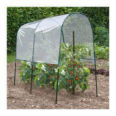 (notitle) – Tomatoe Planting - Growing Plants at Home Allotment Gardening, Potager Garden, Garden Trellis, Garden Fencing, Garden Planters, Garden Beds, Growing Vegetables, Growing Plants, Raised Garden Bed Plans