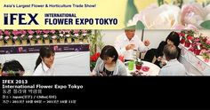 IFEX 2013 International Flower Expo Tokyo 동경 플라워 박람회