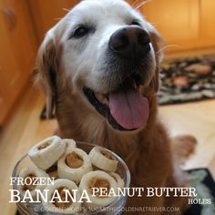 Frozen Banana Peanut Butter Holes via @goldenwoofs. Yum yum!