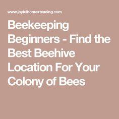 Free Newsletter Keeping Backyard Bees Beekeeping Pinterest - Backyard beekeeping for beginners
