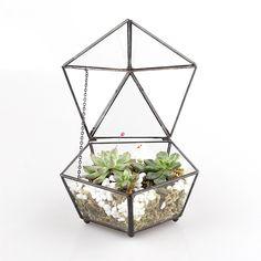 Amazon.com: Small Modern Artistic Clear Glass Jewel-boxed Pentagon Shape Glass Geometric Terrarium Plant Succulent Planter Box Moss Fern with Swing Lid Feet: Home & Kitchen