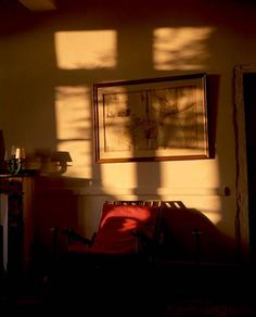 Julien Oppenheim | Photographe ~Love the lighting, there's a certain time of day where my room looks like this...