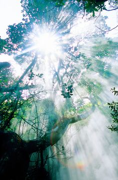 Rincon de la Vieja National Park, Costa Rica