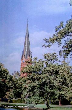 St.Marien Kirche in Winsen - Luhe , Winsen / Luhe