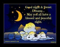 Good night, Buenas Noches, Buonanotte, Boa Noite, Bonne Nuit, Welterusten, Gute Nacht !!