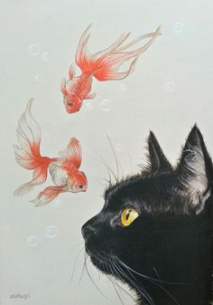 Goldfish and black cat - - Katzen - Cat Drawing Art Inspo, Inspiration Art, Photo Chat, Art Et Illustration, Cat Illustrations, Cat Wallpaper, Goldfish Wallpaper, Cat Colors, Crazy Cats