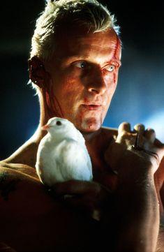 Blade Runner. Rutger Hauer as Roy Batty.