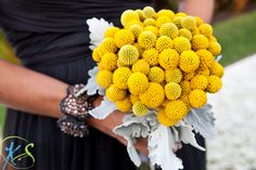 Here's an great way to use a typical accent flower as a feature flower! It's also a very fuzzy bouquet.