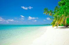 Puerto Limón, en Costa Rica, tiene una variedad de playas completamente diferentes una de otra... así, por ejemplo, podemos encontrar Playa Uvita (la de la foto) y a un par de kilómetros estar frente a Playa Negra, en donde el color de la arena es oscura, completamente diferente, pero no menos bonita. Las palmeras en la orilla son una constante.