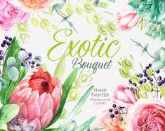 Hochzeit Blumen Aquarell, Protea, englische Rosen, Сhokeberry, Eukalyptus, Magnolia, Sukkulenten, Handpainted Clipart, Einladung, Grußkarte
