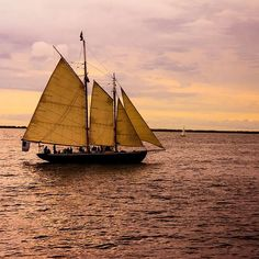 Ptown bound this Saturday and so excited! Shot this scene last year as we were headed out to whale watch. Beautiful area and totes gay friendly! #ptown #sailing #gay #gayboy #gayman #art #photography #photographer #gayart #gayartist #travel #gaytravel #lgbt #lgbttravel #incontrastphotos #instapic #picoftheday #mynormalgaylife #blog #lovemylife by incontrastphotos