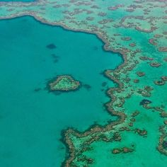 #heartreef #greatbarrierreef #coralsea #australia #march2016 by damiencrosse_official http://ift.tt/1UokkV2