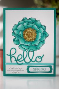 Stampin Up | Blended Bloom | Crazy About You