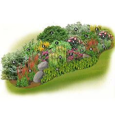 Gardn plan for a wet spot in the garden - flowerbed and rocks