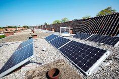 ecogenie roof