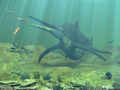 Mesozoic Earth - A late-Triassic underwater scene from the Panthalassa Ocean featuring a giant Shonisaurus ichthyosaur, Belemnites, an Ammonite, shark, giant clam, small fish, brain coral, columnar coral, staghorn coral and other undersea flora & fauna (1280x960) - Natural History Illustration