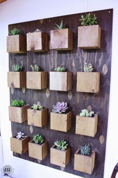 Urban Garden Make your own DIY Garden Wall perfect for succulents or other plants. This simple tutorial can be used for a BIG statement wall or a small accent piece. Succulent Planter Diy, Diy Planters, Cacti And Succulents, Garden Planters, Balcony Garden, Indoor Succulent Garden, Wall Garden Indoor, Cactus Plants, Planter Ideas