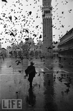 Dmitri Kessel  Piazza San Marco on a Rainy Day  Venice, Italy, December 1952  [From the LIFE magazine Photo Archive]