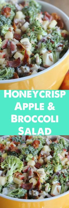 A lightened up twist on a family favorite recipe. Crunchy Honeycrisp apples are paired with broccoli, sunflower seeds, raisins and bacon—a perfect dish to bring to a cookout or party!