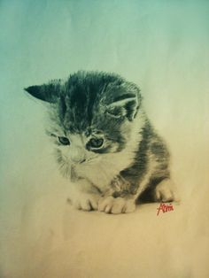 how to draw kittens - Google Search