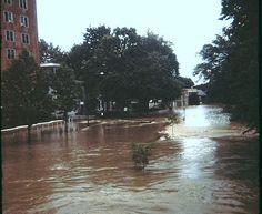 Front Street Harrisburg PA 1972 Flood    View of Front Street in Harrisburg Pa during the Hurricane Agnes flood of 1972.  Very scary memories from my childhood.
