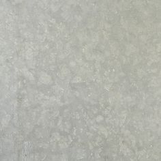 Limestone Seagrass