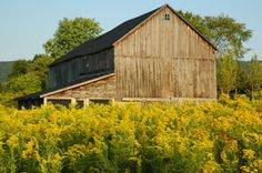 """Barns of the Berkshires""."