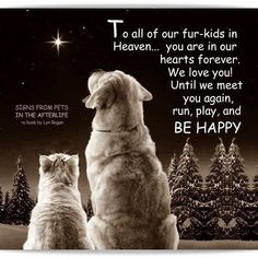 To all our fur kids in heaven All Dogs, I Love Dogs, Puppy Love, Dogs And Puppies, Doggies, Animal Quotes, Dog Quotes, Pet Loss Quotes, Dog Poems