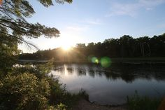 One of my favourite spots in the Pinery Provincial Park: the Old Ausable Channel near Riverside area 3.