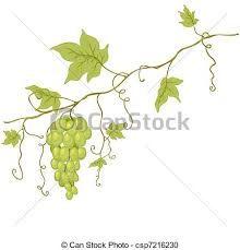 Afbeeldingsresultaat voor afbeelding herfst druivenbladeren