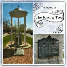 The legend and mystery of The Kissing Tree and the lady in the velvet dress... Some say that you can still spot a girl in a lavender dress waiting by The Kissing Tree. Read the complete story ->