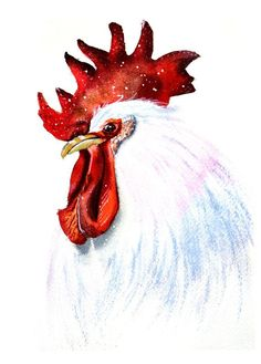 Check out Rooster watercolor print art, Rooster painting watercolor, Bird watercolor painting, Rooster art print, rooster wall art, rooster decor on artolgashef