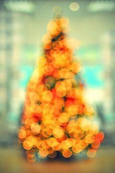 orange colours#lights#endo's christmas tree