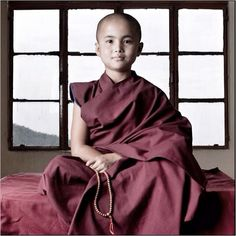 Buddhist Monk Cute