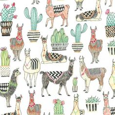 A new collection of whimsical llamas and coordinating prints. From Michael Miller.Lovely Llamas - Lovely Llamas in Mint - Alpacas, Mint Background, Llama Alpaca, Baby Alpaca, Cactus, Tree Quilt, Michael Miller Fabric, Illustrations, Pink Fabric