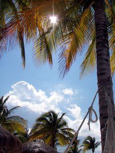 MK Photos: Honeymoon - Cozumel, Mexico