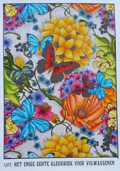 Voorbeelden Van Kleurplaten Voor Volwassenen.57 Spannende Afbeeldingen Over Voorbeelden Kleurplaten Adult