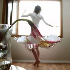 Dance like nobody is watching..